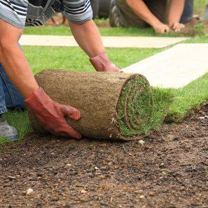 Întreținerea și administrarea spațiilor verzi și constructia de locuri de joacă